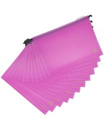 PP Hanging Files with Indicator Pack of 12 Pcs. 260 x 365 mm Size